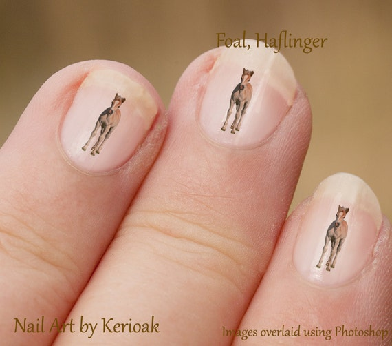 image 0 - Haflinger Foal Horse Nail Art Stickers Baby Horse Fingernail Etsy
