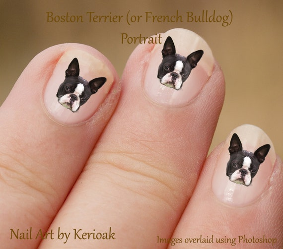 Boston Terrier Portrait Nail Art Stickers Boston Terrier Etsy