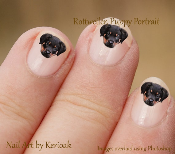Rottweiler Nail Art Hond Nail Art Stickers Rottweiler Nail Etsy