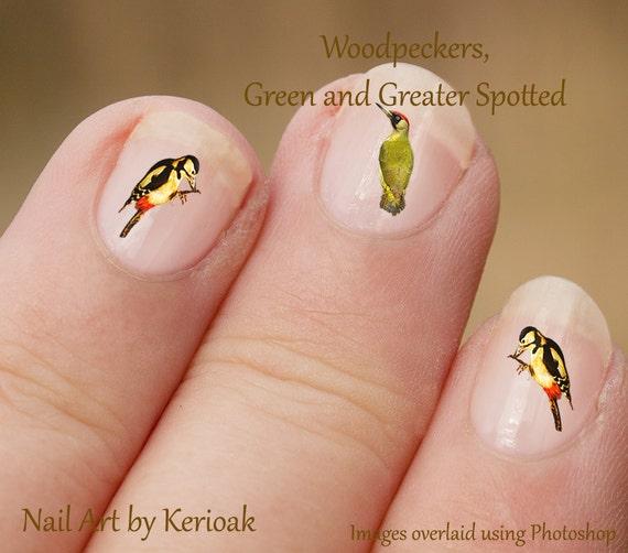 Woodpecker Nail Art Bird Nail Art Stickers Woodpecker Etsy