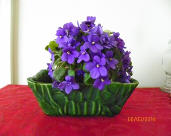 Vintage Upco Green Pottery Planter With Leaf Design