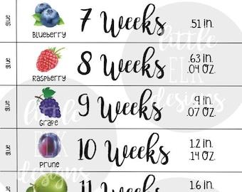 Pregnancy Countdown Paper Chain