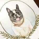Pet Illustration, Pet Portrait, Pet Loss Gifts, Dog Portrait, Custom Pet Portrait, Personalized Pet Portrait, Original Pet Portrait,