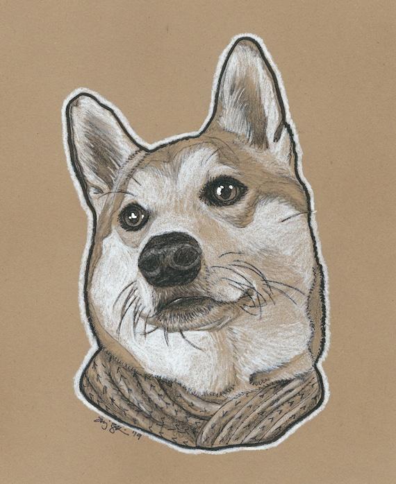 Custom Pet Portrait | Charcoal Pet Portrait | Pet Sketch | Pet Drawing | Dog Portrait | Cat Portrait