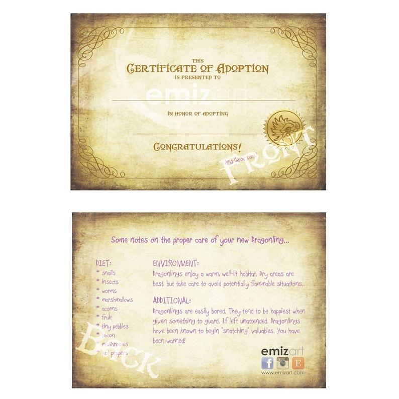 Certificate of Adoption image 0
