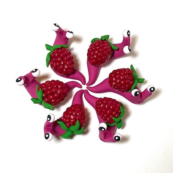 Raspberry Snail
