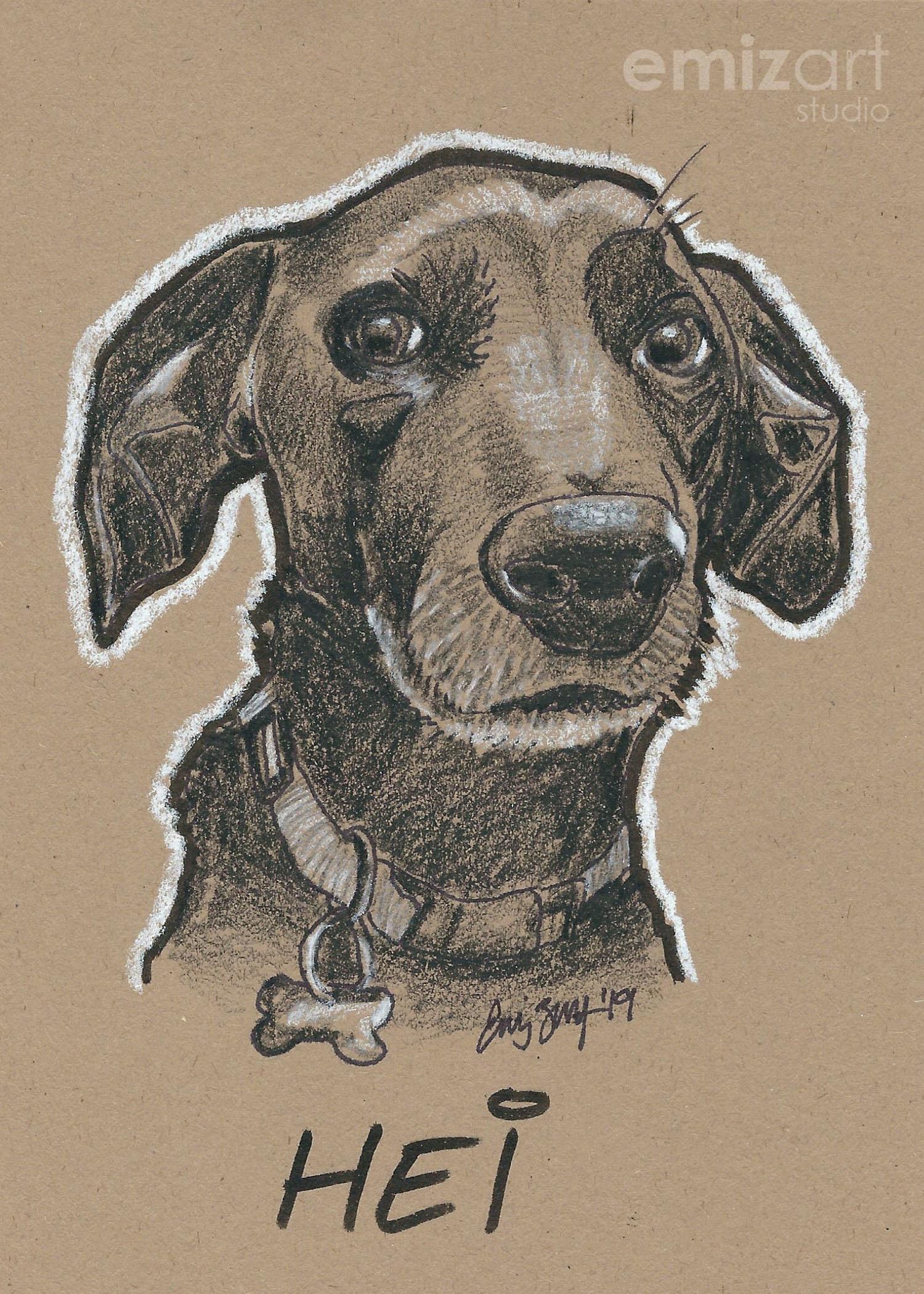 fe3140824b19 Custom Pet Portrait | Charcoal Pet Portrait | Pet Sketch | Pet Drawing ...