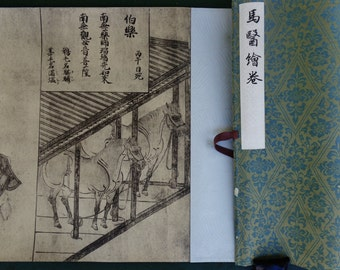 "Vintage Japanese collectible reproduction 马医绘卷 super long scroll of national art of science in ""horses & herbs"","