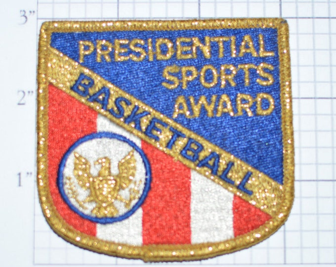 """Award Embroidered Sew On Patch 4/"""" SCR Skydiving Star Crest Recipient"""