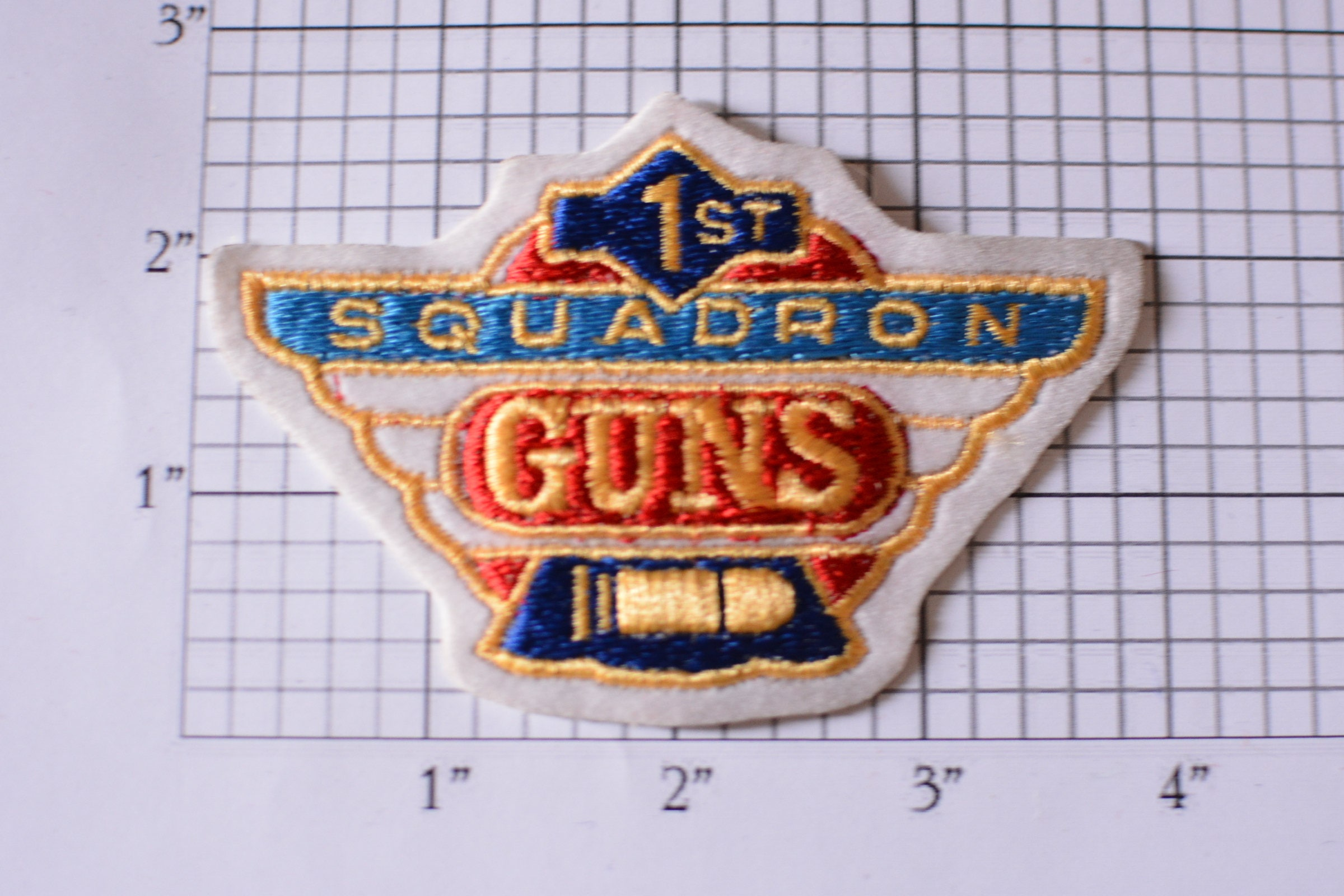 1st Squadron Guns Iron-On Vintage Patch Military Jacket Patch Shirt