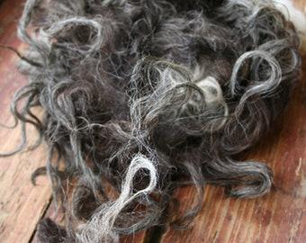 4 oz Klovsjo Lamb wool fleece Rare breed Raw wool