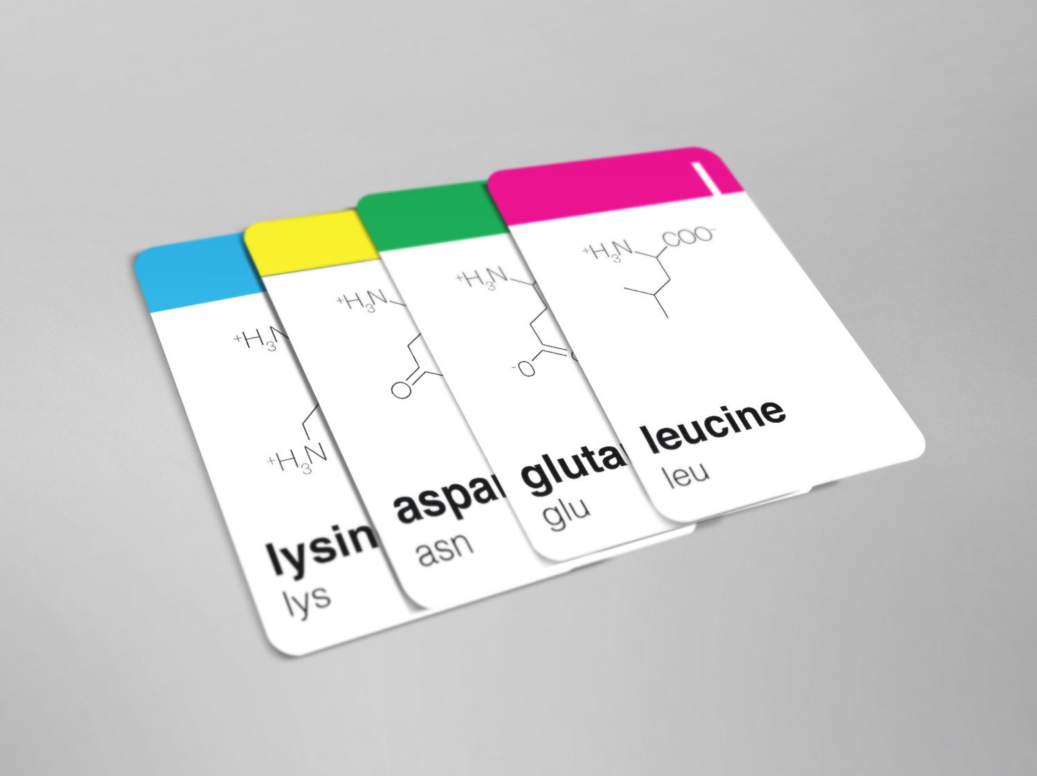 photo about Amino Acid Flashcards Printable called Mino - Amino Acid Flash Playing cards - Minimalist
