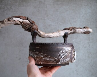 Handmade Ceramic Vessel Jar, Wooden Handle, One of The Kind Art Object, Bark Textured Canister, Malibu Driftwood Lid, Unique Rustic Art Gift