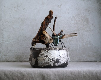 Handmade Raku Vessel, Raku Arts, Beetle Wooden Handle Jar, Unique Ceramic, One of The Kind Art Object, Crackle Raku Glaze, Gallery Art Piece