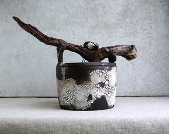 Handmade Raku Vessel, Beetle Decor, Wooden Handle Jar, Unique Ceramics, One of The Kind Art Object, Crackle Raku Glaze, Gallery Art Piece.