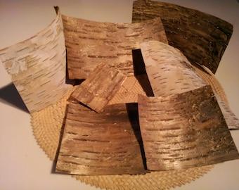 Wood Veneer Sheets, Birch Bark Veneer, Woodworking Accessories, Eco Friendly