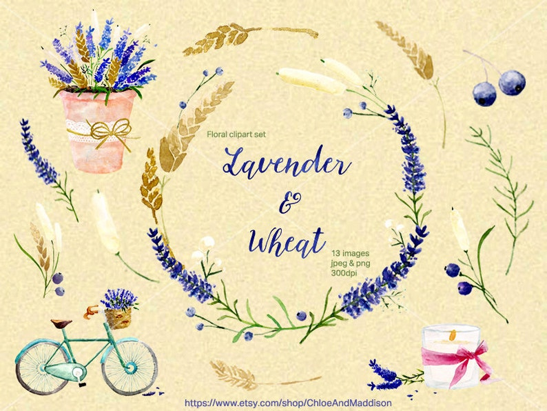 79074aba6ae9 Lavender   Wheat. Digital Clipart. Hand painted Watercolor