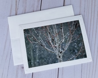 Blank Photo Cards, Winter Maple Tree Card Set, Greeting Cards, Blank Cards, Thank You Cards, Card Gift Set, Blank Note Cards