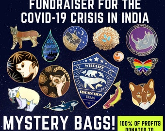 FUNDRAISER: Mystery Grab-Bag! 3, 5, or 10 Seconds Pins! 100% Donated to Covid Relief Programs in India