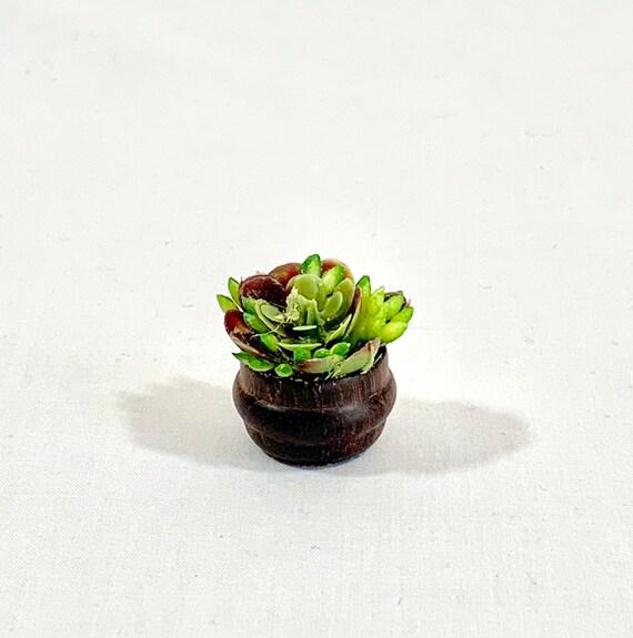 Miniature Dollhouse FAIRY GARDEN ~ Succulent Plants Planter Bowl ~ NEW