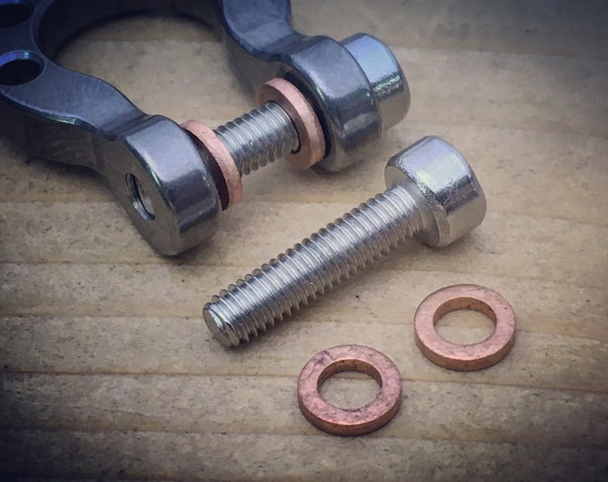 Replacement of Screws and Washers of the Omega Ti-Shackles
