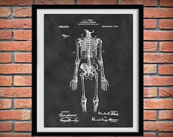 1911 Anatomical Skeleton Patent Print - Skeleton Poster - Orthopedic - Medical Poster -  Doctors Office Decor - Anatomy Art - Hospital Decor