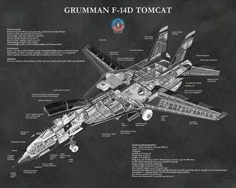 F-14D Tomcat Bomber Plane Print - F-14D Fighter Jet Poster - Northrop Grumman F-14D Aircraft Print - Military Fighter Plane - Aviation Decor