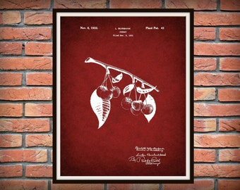 Patent 1932 Cherry Patent - Plant Wall Art - Fruit Grower Art - Orchard Art - Farmer Art - Gardener Wall Art - Botany - Horticulture Art