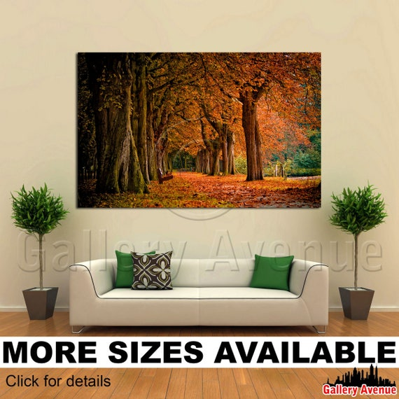 Fall Forest Trees Colors 3.2 Wall Art Canvas Picture Print