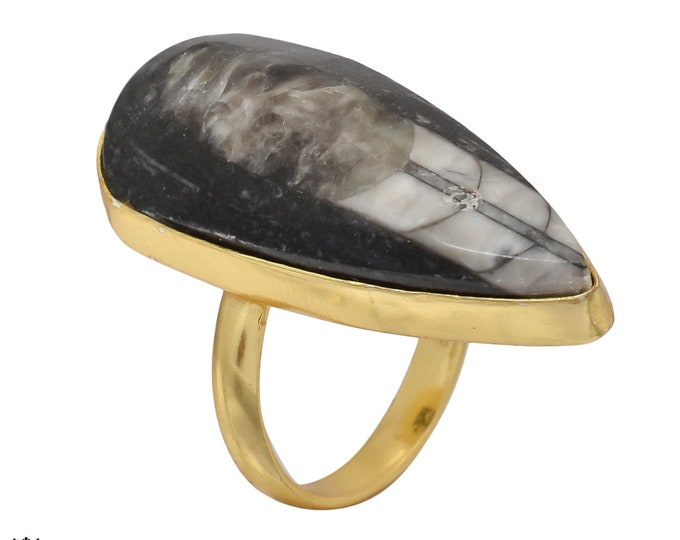 Size 8.50 - Size 10 Adjustable Orthoceras Fossil 24K Gold Plated Ring GPR471