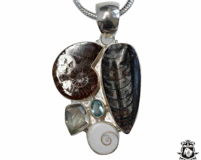 ORTHOCERAS FOSSIL Ammonite Shell 925 Sterling Silver + BONDED Copper Pendant Snake Chain & Worldwide Shipping p4835