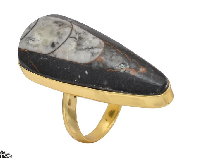 Size 9.5 - Size 11 Adjustable Orthoceras Fossil 24K Gold Plated Ring GPR468