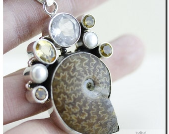 Placenticeras MEEKI Ammonite Fossil Citrine Clear Topaz Round Pearl 925 SOLID Sterling Silver Pendant + 4mm Chain & FREE  Shipping P7
