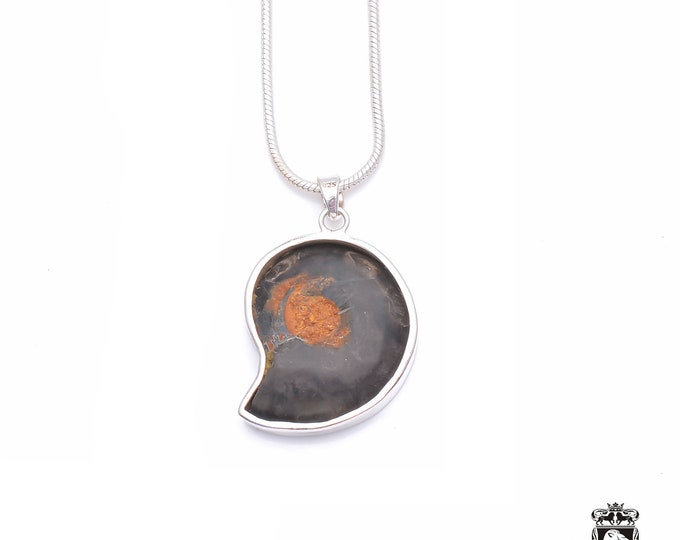 Pyrite Formed MADAGASCAR AMMONITE Fine 925+ 975 S0LID Sterling Silver Pendant + Snake Chain P6244
