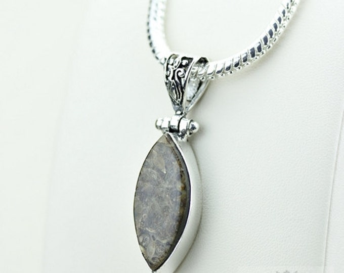 Marquise Shaped TURRITELLA AGATE Fossil 925 S0LID Sterling Silver Pendant + 4MM Snake Chain  P3516