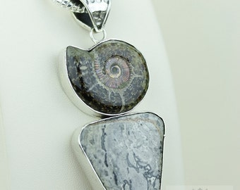 ITALIAN Made! Ammonite Fossil Crazylace Agate 925 S0LID Sterling Silver Pendant + 4MM Snake Chain & FREE Worldwide Express Shipping MP179