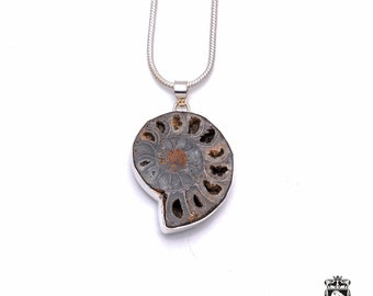 AMMONITE FOSSIL Fine 925+ 975 S0LID Sterling Silver Pendant + Snake Chain P6296