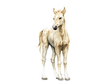 Horse No 1 Art Print- Baby Animal Painting - Colt Painting - Farm Animal - Baby horse Painting - Colt- Horse - Baby Room - Watercolor