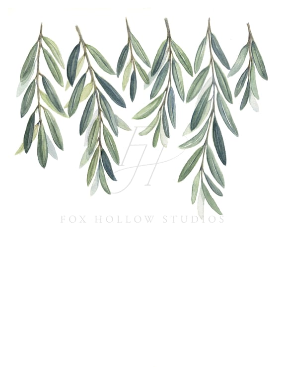 Olive Branches Art Print Olive Branch Leaves Painting Etsy