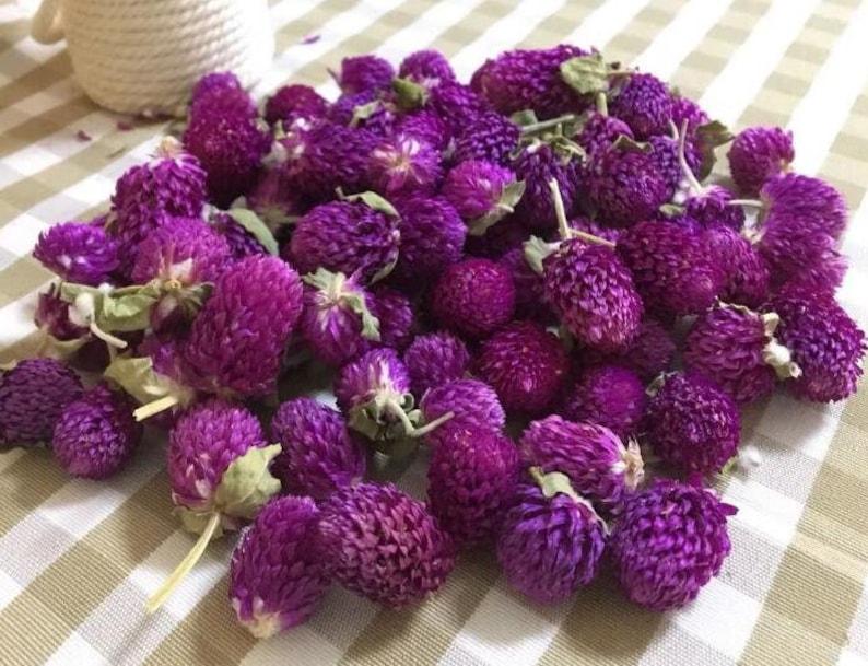50 Pcs Redartfulplum Heads real Flowers head,2.75,Hair Flower Supply,Wedding for making garland 192-9