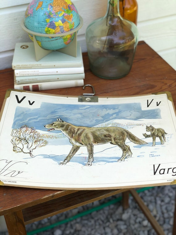Vintage Swedish school house poster letter illustrations / art poster Sweden wolf / varg