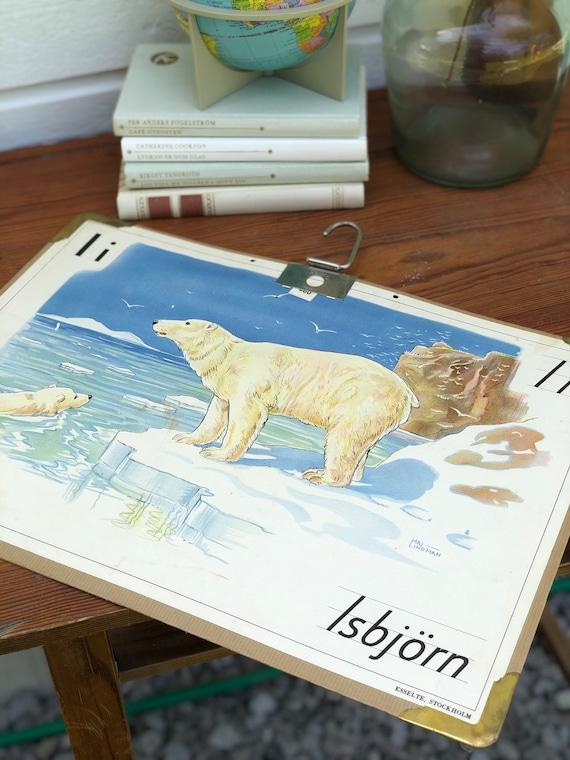 Vintage Swedish school house poster letter illustrations / art poster Sweden polar bear isbjörn