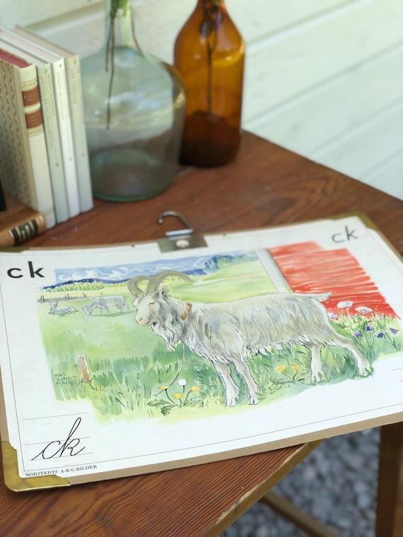 Vintage Swedish school house poster letter illustrations / art poster Sweden buck mountain goat