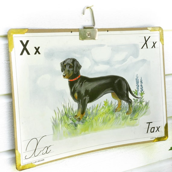 Vintage Swedish school house poster letter illustrations / art poster Tax / dog / wiener dog / sausage dog / daschund