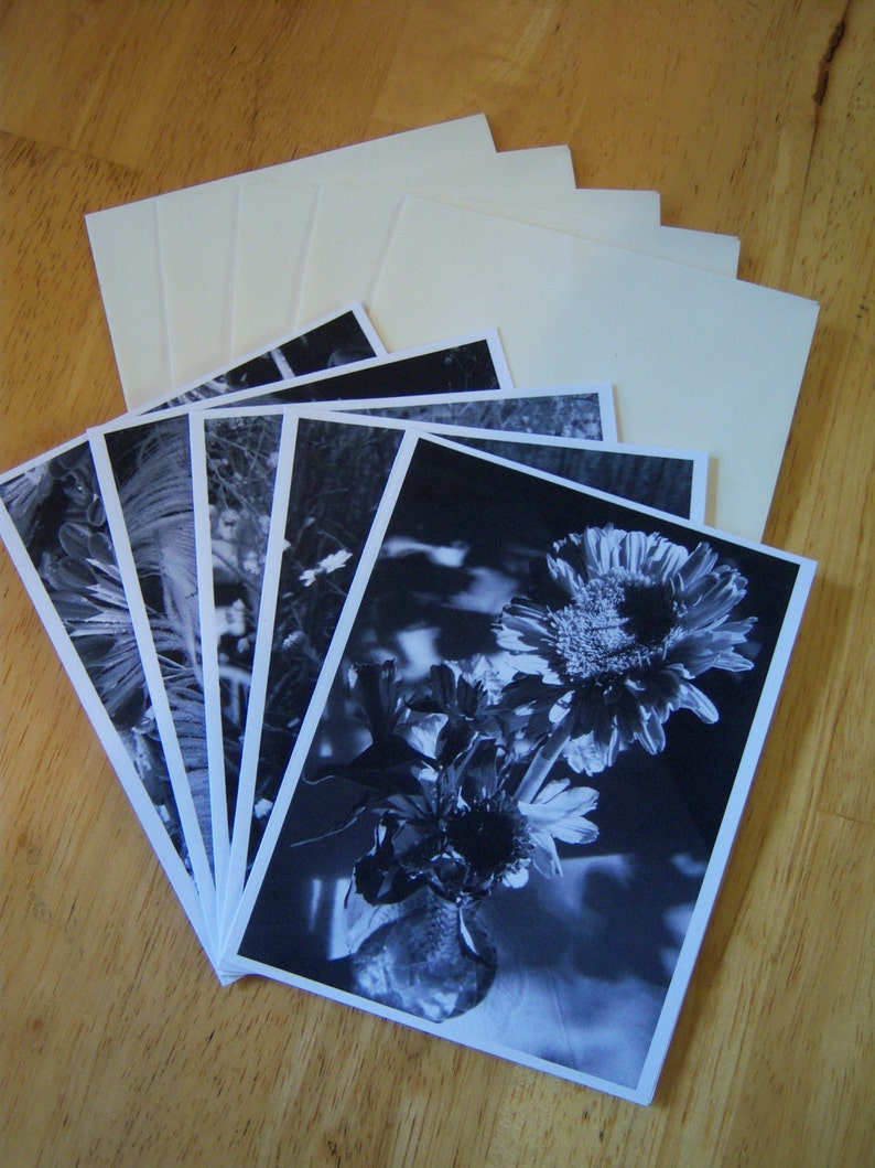 greeting cards,note cards,black and white photography,OOAK cards,flowers,feathers,envelopes