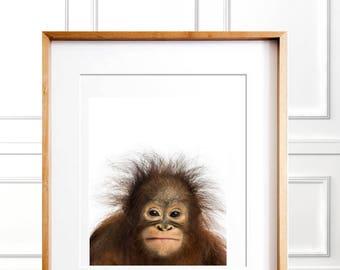 orangutan baby print nursery wall decor baby animal print digital safari animalbaby shower gift baby monkey print baby animal poster