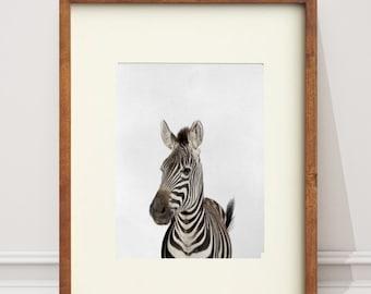 Zebra Gift Print,Safari African Animal,Peekaboo Animal Black and White Decor,Printable Poster, Modern Minimalist Digital Download, Kids Room
