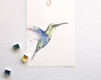 Wildlife: Hummingbird
