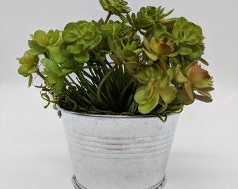 Galvanized Potted Mini Succulent Arrangement