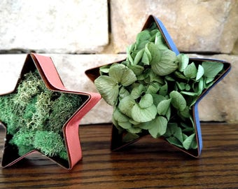Metal Stars with Dried Flowers set of 2